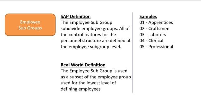 SAP HCM Reporting Employee Sub Groups
