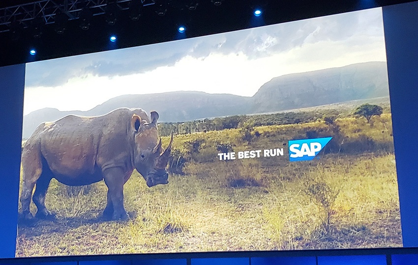 The Best Run SAP
