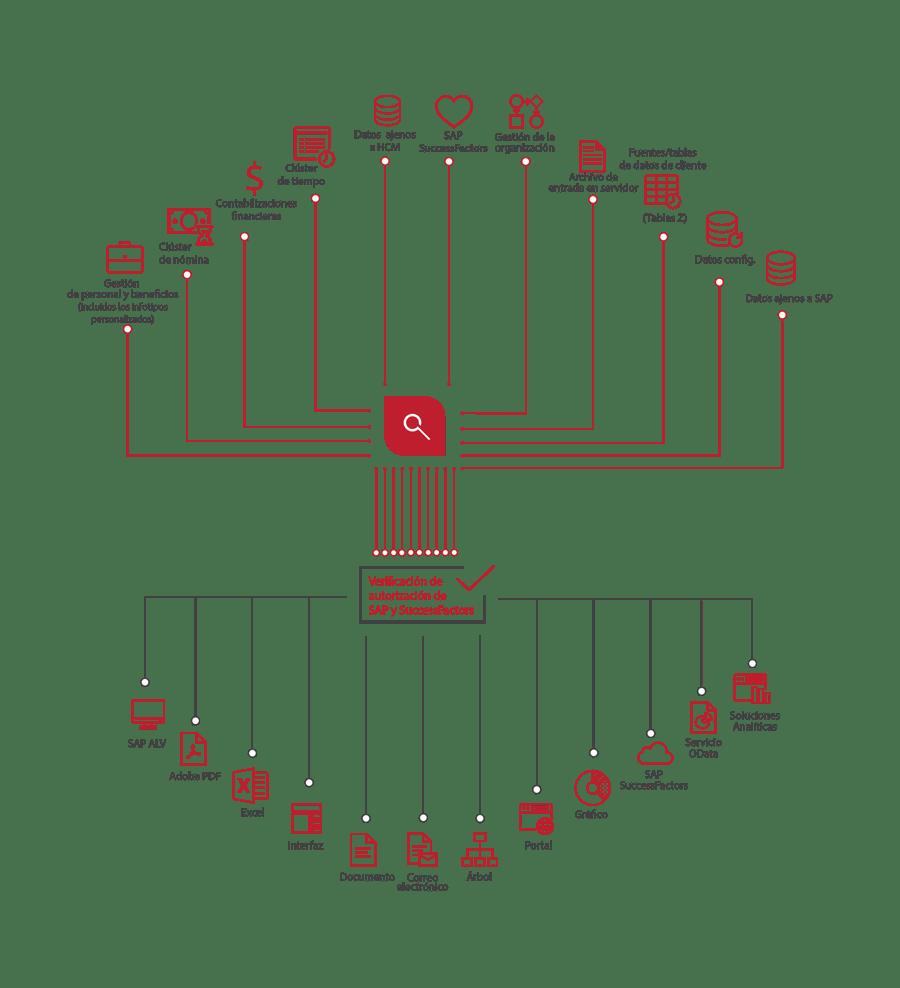 QM_Spider_Diagram-ES-Sep2020-01