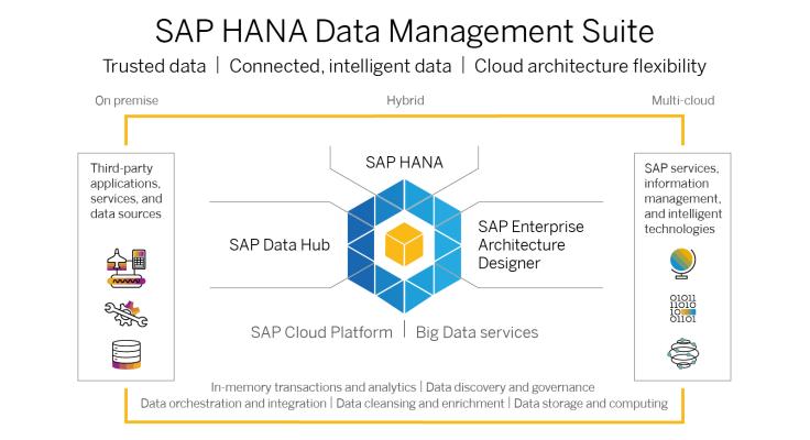 SAP HANA Data Management Suite