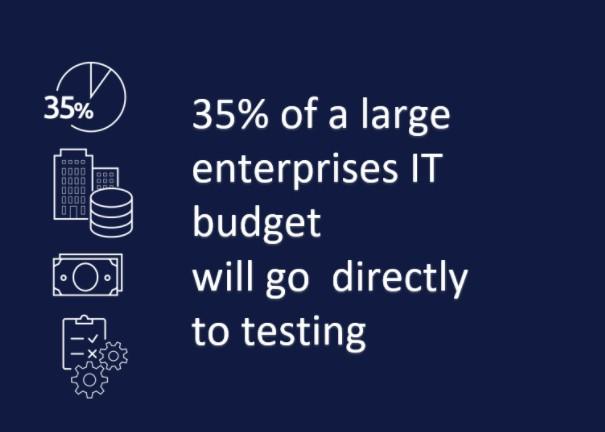 SAP Data Testing Budget