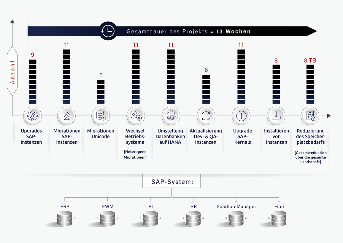 SAP_systems_infographic_24_Jan-06