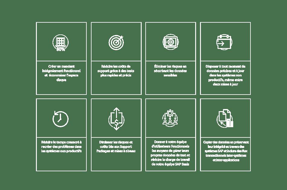 DSM Graphic FR-01