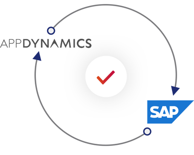 How we bring AppDynamics to SAP