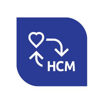 DSM Object Sync for SuccessFactors & HCM