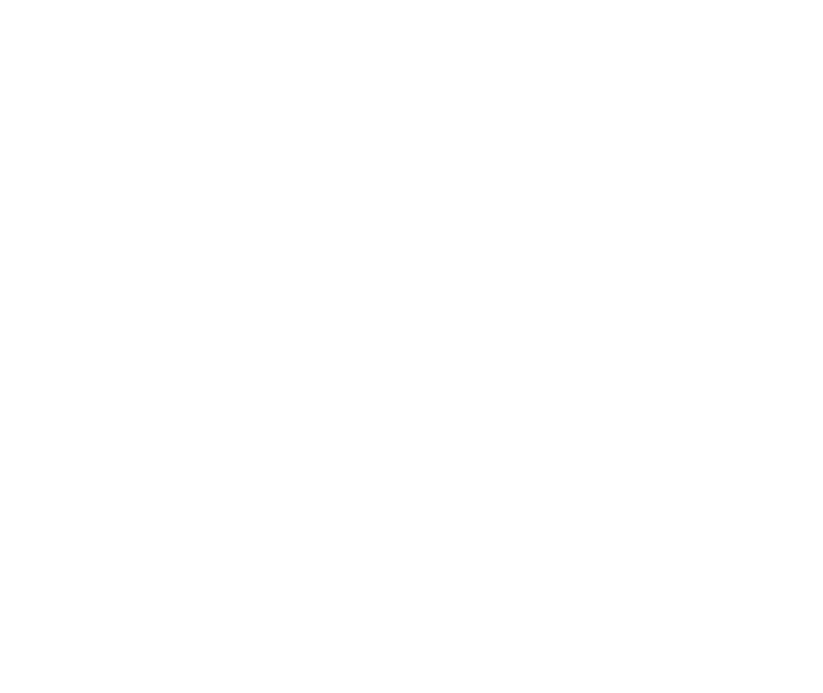 Anonymisierungsprofile