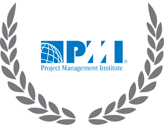 The Project Management Institute (PMI)