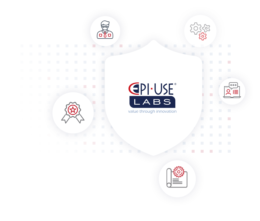 EPI-USE Labs assists companies in the following ways with their information security programs and certifications