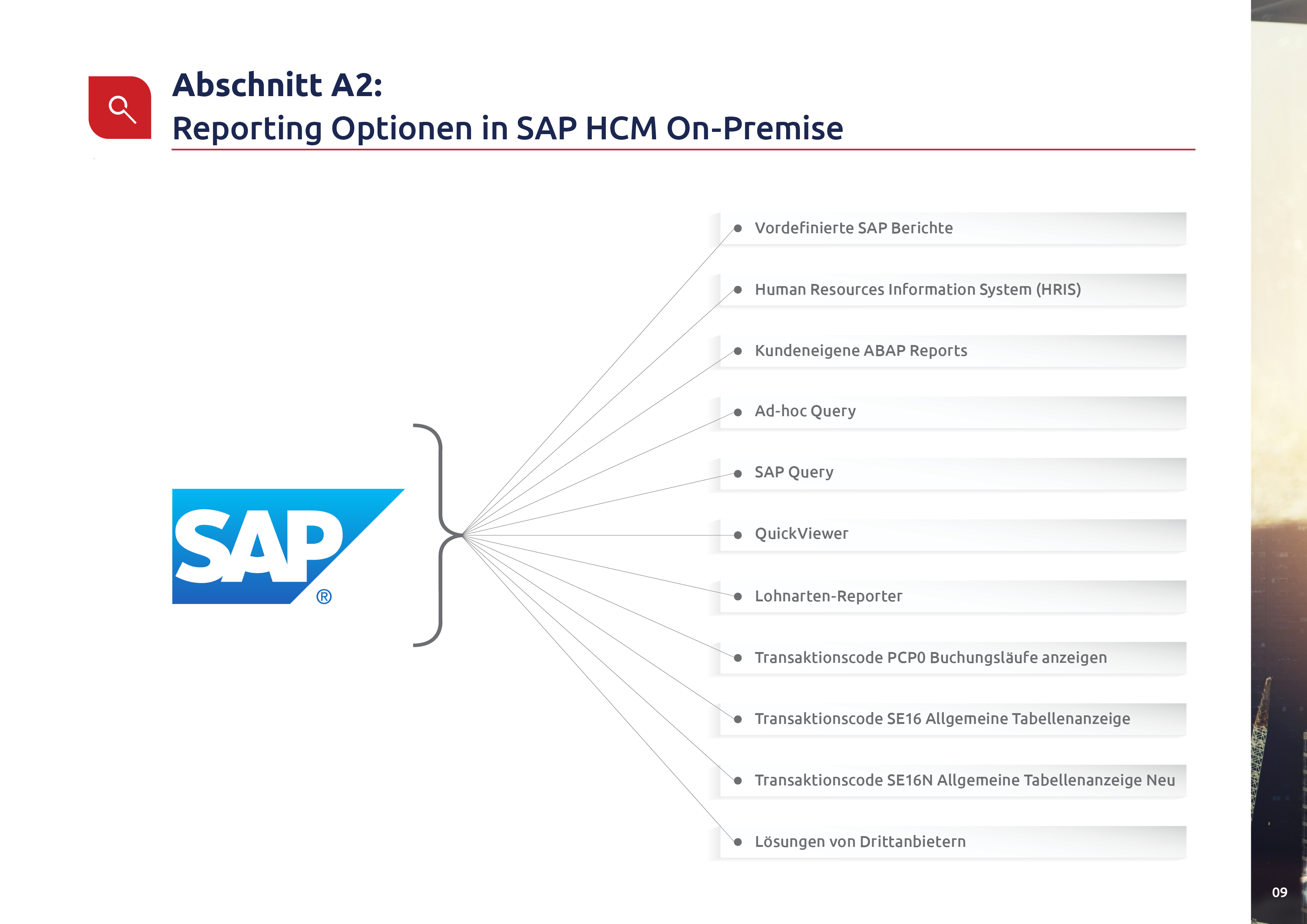 SAP HCM & SuccessFactors customers p11