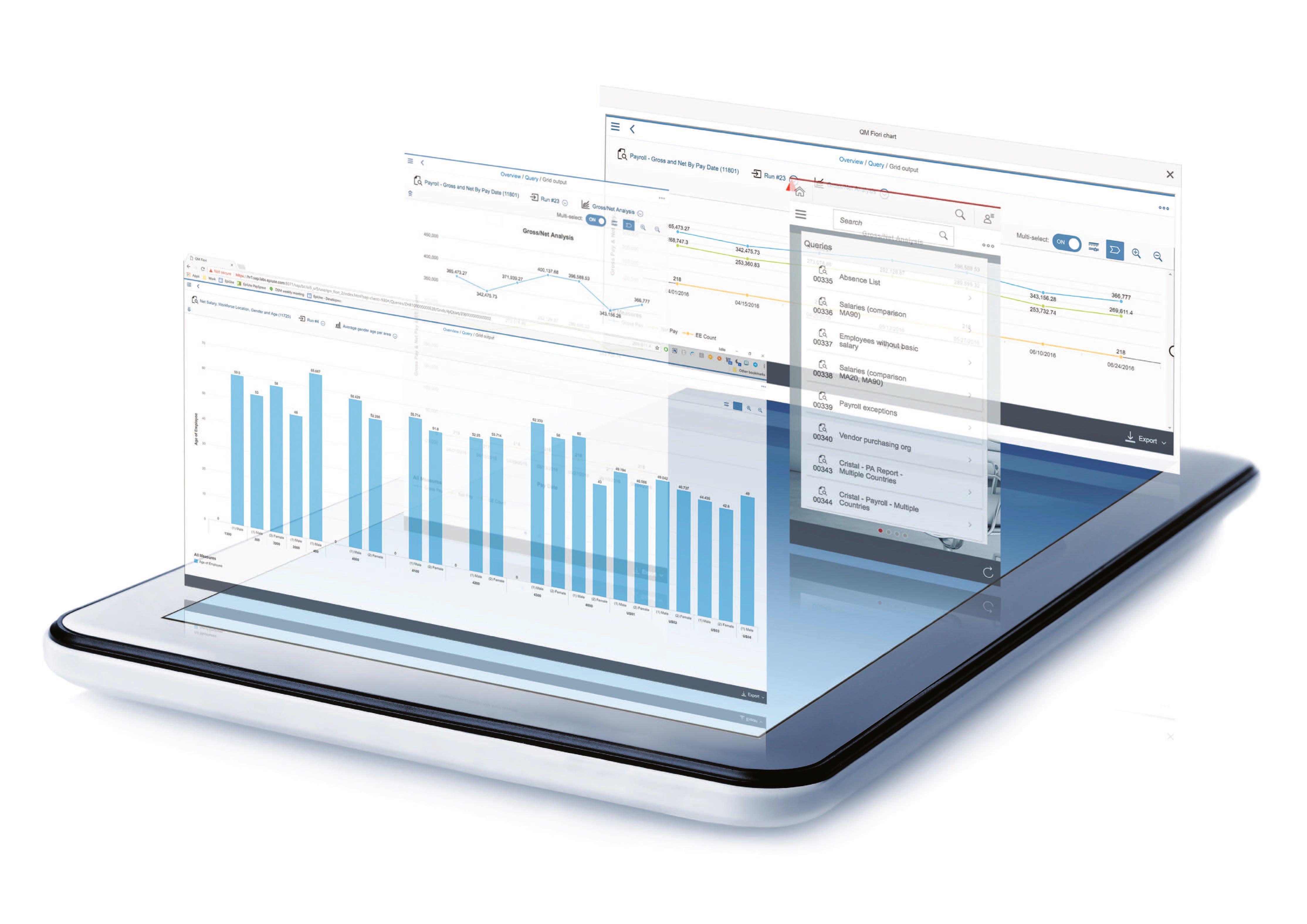 SAP HCM & SuccessFactors customers p6